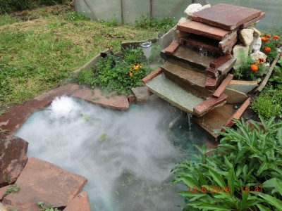 Генератор тумана в прудике