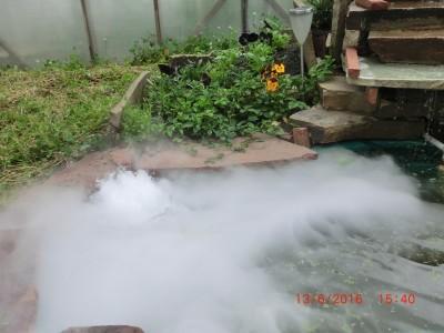 Прудик в тумане